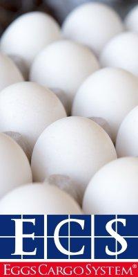 EggsCargoSystem